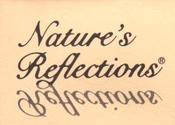 Nature's Reflections Limitied
